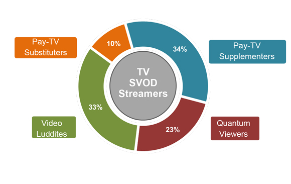 SVOD user segments